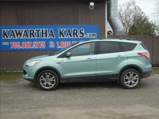 Used 2013 Ford Escape SEL for sale in Fenelon Falls, ON