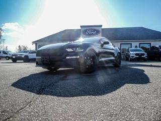 Used 2019 Ford Mustang EcoBoost- BLUETOOTH- BACKUP CAMERA- PUSH TO START for sale in Essex, ON