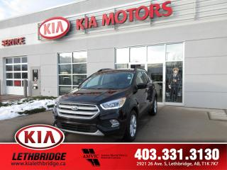 Used 2019 Ford Escape SEL for sale in Lethbridge, AB