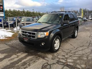 Used 2010 Ford Escape XLT for sale in Newmarket, ON