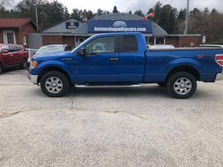 Used 2010 Ford F-150 XLT for sale in Flesherton, ON