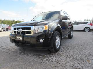 Used 2011 Ford Escape V6 Auto XLT for sale in Newmarket, ON