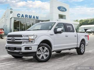 New 2020 Ford F-150 PLATINUM for sale in Carman, MB