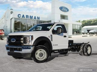 New 2019 Ford F-550 XL for sale in Carman, MB