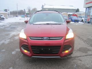 Used 2013 Ford Escape SEL for sale in Simcoe, ON