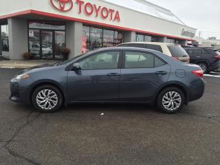 Used 2019 Toyota Corolla LE HEATED SEATS, PARKING CAMERA & MORE! for sale in Cambridge, ON
