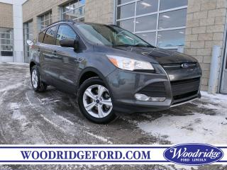 Used 2016 Ford Escape SE $145/bw for sale in Calgary, AB