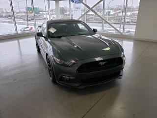 Used 2015 Ford Mustang GT modèle à toit fuyant 2 portes for sale in Montréal, QC