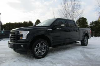 Used 2017 Ford F-150 Cab SuperCrew 4RM 157 po XLT for sale in Thetford Mines, QC