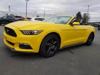 Used 2016 Ford Mustang DÉCAPOTABLE, UN 2017 AU PRIX D'UN 2016 for sale in Vallée-Jonction, QC