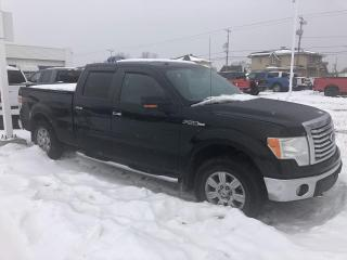 Used 2010 Ford F-150 Cab SuperCrew 4RM 157 po FX4 for sale in Roberval, QC