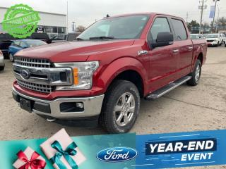 New 2019 Ford F-150 XLT for sale in Woodstock, ON