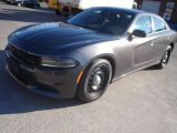 Photo of Grey 2016 Dodge Charger
