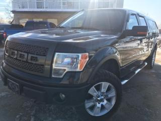 Used 2010 Ford F-150 Xlt/fx4/lariat/king ranch/harley-davidson/platine for sale in Papineauville, QC