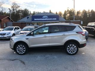 Used 2017 Ford Escape Titanium for sale in Flesherton, ON
