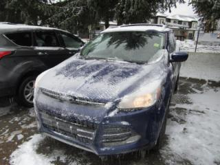 Used 2013 Ford Escape SE for sale in Tillsonburg, ON