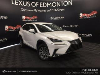 New 2020 Lexus NX 300 Standard Package for sale in Edmonton, AB