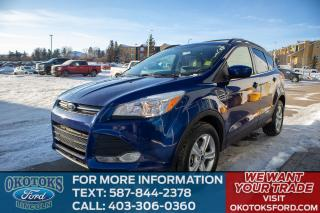 Used 2015 Ford Escape SE for sale in Okotoks, AB