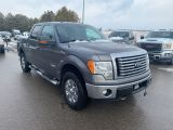 Photo of Gray 2012 Ford F-150