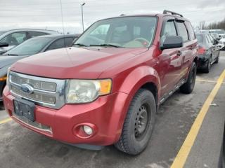 Used 2008 Ford Escape 4WD 4dr V6 XLT for sale in Whitby, ON