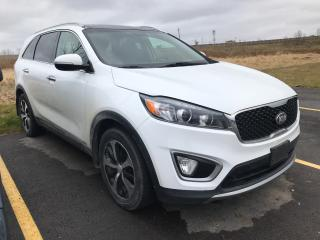 Used 2016 Kia Sorento EX V6 AWD for sale in London, ON