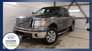 Used 2010 Ford F-150 Cabine Super 4RM 133 po SVT Raptor for sale in Val-David, QC
