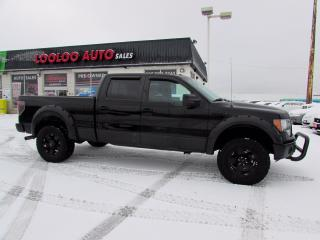 Used 2011 Ford F-150 FX4 SuperCrew 5.5-ft. BED 4WD NAVI CAMERA CERTIFIED for sale in Milton, ON