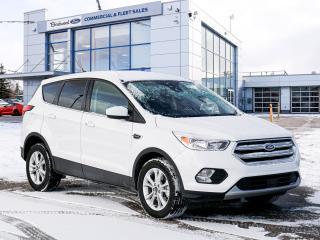 Used 2019 Ford Escape SE Clean CarFAX | 1 Ownr | SafeSmart Pkg | Htd Sts for sale in Winnipeg, MB