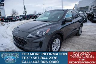 New 2020 Ford Escape SE for sale in Okotoks, AB
