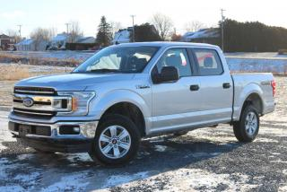 Used 2019 Ford F-150 XLT 4X4 (V8 5.0L) for sale in St-Isidore, QC