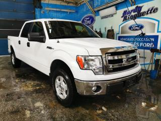 Used 2014 Ford F-150 XLT 4WD SUPERCREW for sale in Val-D'or, QC