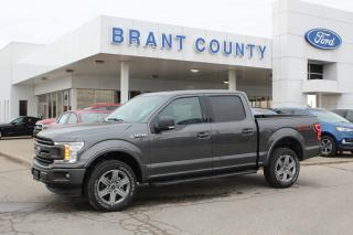 New 2019 Ford F-150 XLT for sale in Brantford, ON