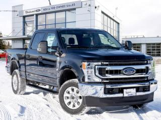 New 2020 Ford F-250 Super Duty SRW XLT BOARDS   TAILGATE STEP for sale in Winnipeg, MB