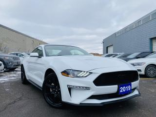 Used 2019 Ford Mustang BLACK TOP PACKAGE|REAR VIEW CAMERA|SATELLITE RADIO|PWR SEATS for sale in Brampton, ON