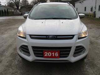 Used 2016 Ford Escape cloth for sale in Ailsa Craig, ON