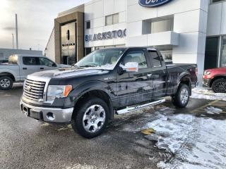 Used 2010 Ford F-150 XLT for sale in Orangeville, ON