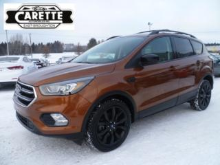 Used 2017 Ford Escape SE AWD GPS for sale in East broughton, QC