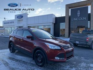 Used 2014 Ford Escape SE for sale in Beauceville, QC