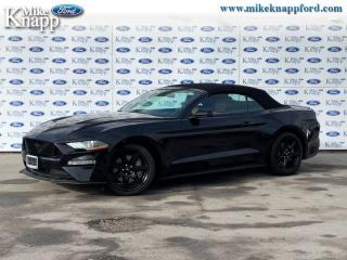 Used 2019 Ford Mustang GT Premium Convertible  - Convertible for sale in Welland, ON