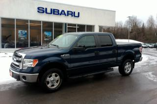 Used 2014 Ford F-150 XLT for sale in Minden, ON