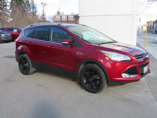 Used 2015 Ford Escape 4WD 4DR TITANIUM for sale in Hagersville, ON