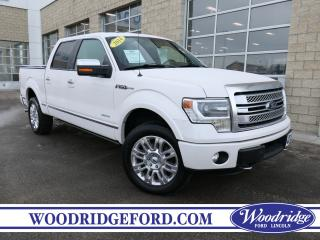 Used 2014 Ford F-150 PLATINUM for sale in Calgary, AB