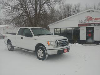 Used 2009 Ford F-150 XLT for sale in Barrie, ON