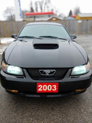 2003 Ford Mustang Deluxe V6 Coupe, manual transmission, leather seats, tinted windows = CHEAP FUN driving behind the wheel of this great little Mustang.