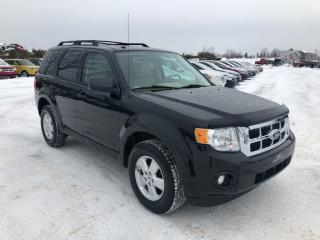 Used 2012 Ford Escape XLT for sale in Lévis, QC