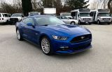 Photo of Blue 2017 Ford Mustang