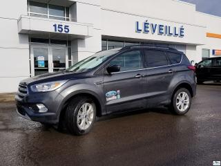 Used 2019 Ford Escape DEMO *SEL*CUIR*HAYON ÉLECTRIQUE for sale in St-Jérôme, QC
