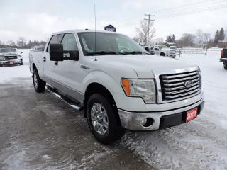 Used 2010 Ford F-150 XLT/XTR. 5.4L V8. No rust. Well oiled. for sale in Gorrie, ON