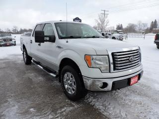 Used 2010 Ford F-150 XLT/XTR. 5.4L V8. No rust. Beautiful condition for sale in Gorrie, ON