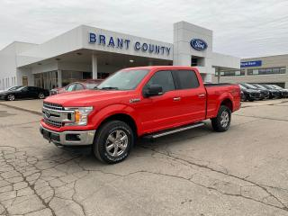 New 2020 Ford F-150 XLT for sale in Brantford, ON